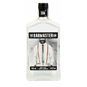 The Barmaster Gin 0,7l 42,9%
