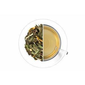 Čaj Ledový Citrus-Zázvor 50g
