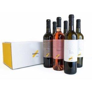 Skoupil Výběr vinaře - kartón vín KERAMIKA 6×0,75l