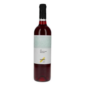 Skoupil SVATOMARTINSKÉ Modrý Portugal Moravské zemské víno 2020 0,75l 12%