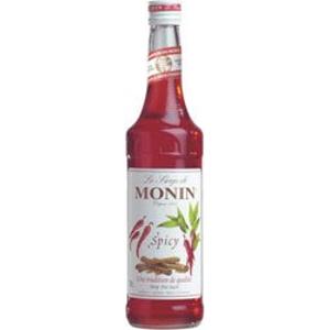 Monin Spicy - Kořeněný 0,7l