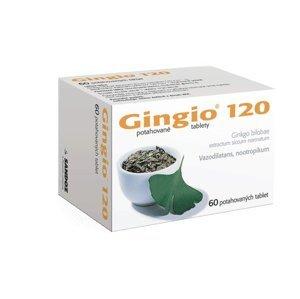 Gingio 120 mg 60 potahovaných tablet