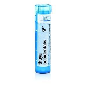 Boiron THUYA OCCIDENTALIS CH9 granule 4 g