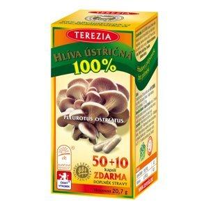 Terezia Hlíva ústřičná 50+10 kapslí