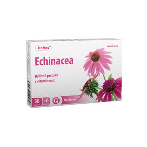 Dr.Max Herbal Echinacea bylinné pastilky 36 pastilek