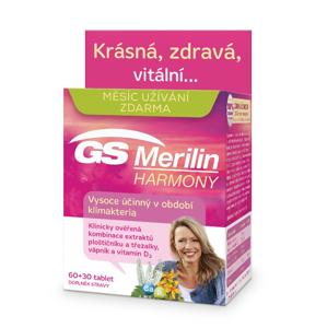 GS Merilin Harmony 60+30 tablet