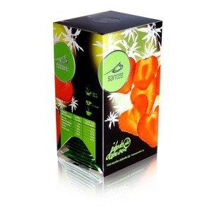 Santée Jahoda & Aloe vera porcovaný čaj 20x2,5 g