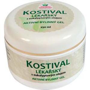 Herbal Harmony Kostival lékařský bylinný gel 250 ml