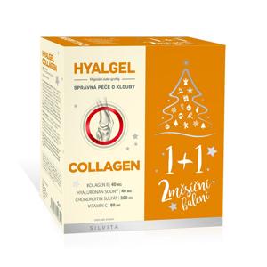 Hyalgel COLLAGEN 2x500 ml vánoční balení 2019