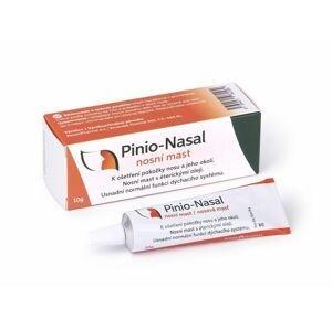 Rosen Pinio-Nasal nosní mast 10 g