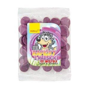 Wolfberry Kapičky z kapsičky od Wolfíka BIO jogurt borůvka 17 g