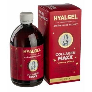 Hyalgel Collagen MAXX višeň vánoční balení 500 ml
