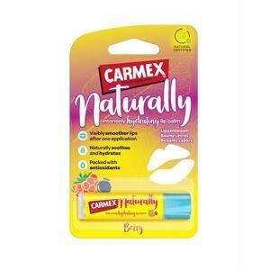 CARMEX Natural Hydratační balzám na rty malina borůvka 4,25 g