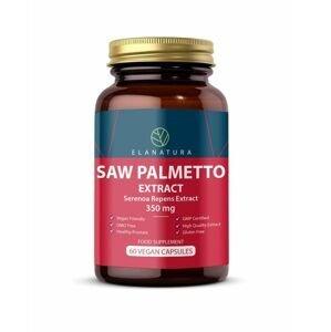 Herbamedica Saw Palmetto extrakt 350 mg 60 kapslí