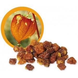 Lifefood Incan Goldenberries sušené BIO RAW 500 g