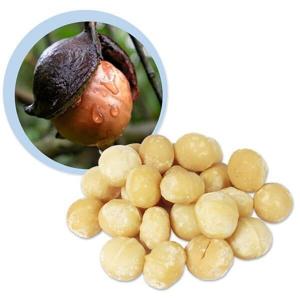 Lifefood Makadamové ořechy raw BIO 500g