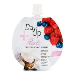 Day Up Dezert ovocný s kokosem, malinami a topiokou 100 g