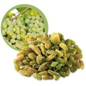 Lifefood Rozinky Green Khorog BIO RAW 500 g