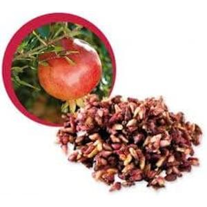 Lifefood Granátové jablko sušená jadérka BIO RAW 500 g