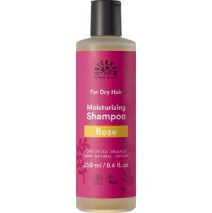 Urtekram Šampon pro suché vlasy Růže BIO 250 ml