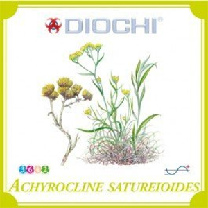 Diochi Achyrocline satureioides čaj 80 g