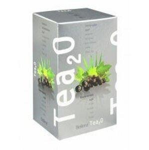 Biogena Čaj Tea2O Černý rybíz + Acai 20 x 2.5 g