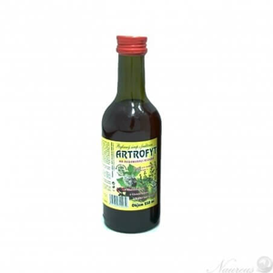 Klášterní officína Bylinný fruktózový sirup BRUSINKA 250 ml