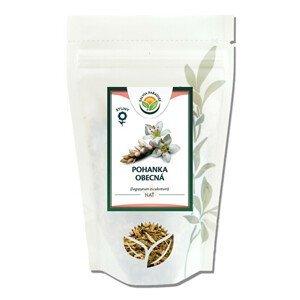Salvia Paradise Pohanka nať 50 g