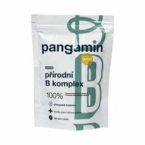 Rapeto Pangamin přírodní B komplex 120 tablet