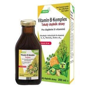 Salus Floradix Vitamin B komplex 250 ml