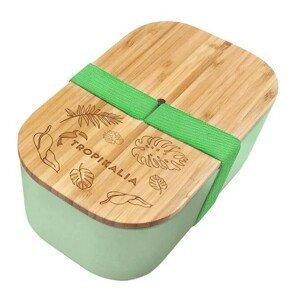 Tropikalia Lunch box ECO - Green s oddělovačem