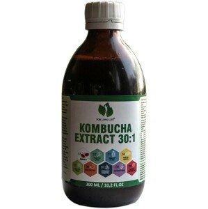 For long life KOMBUCHA EXTRAKT 30:1, odpovídá 9 litrům kombucha čaje