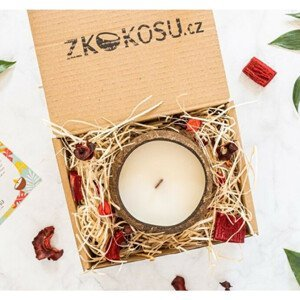 zKokosu Sojová svíčka s vůní TROPICKÉHO OVOCE v dárkovém balení