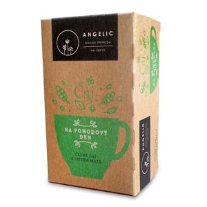 Angelic Angelic Na pohodový den čaj porcovaný 40 g - SLEVA - KRÁTKÁ EXPIRACE 30.4.2020