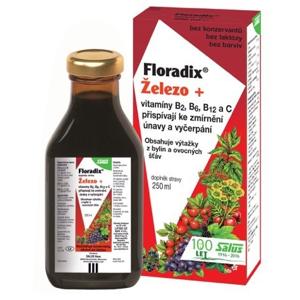 Salus Floradix železo + vitamíny B2, B6, B12 a C 250 ml - SLEVA - POMAČKANÁ KRABIČKA