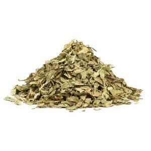 Ajurvédské byliny