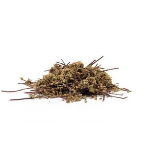 CUTI CUTI (Asplenium lunulatum) - bylina, 1000g