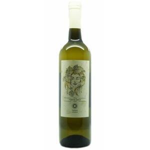 Veltlínské zelené Farebné vinárstvo 0,75l